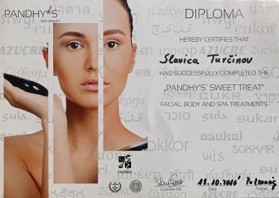 Diploma Pandhys-web